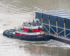Captain D. Tugboat on the East River, New York City (jag9889) Tags: 2017 20170427 aerialview barge boat eastriver outdoor river rooseveltisland ship transportation tug tugboat vessel water waterway workboat jag9889 newyork unitedstates us blackwellsisland island manhattan ny nyc newyorkcity usa unitedstatesofamerica welfareisland