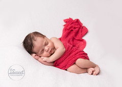 Little lady in red | Roslindale newborn photographer (iSweet Photography) Tags: newborn baby babies infant child girl photographer professional session isabelsweet isweetphotography isweetphoto white red nice newbornphotographer infantphotographer bebe babyphotographer childphotographer sleeping toes feet hands bestbabyphotographerboston bestbabyphotographersouthend bestnewbornphotographersouthend bestinfantphotogaphersouthend backbaybabyphotographer southendbabyphotographer fenwaybabyphotographer roslindalebabyphotographer beaconhillbabyphotographer cambridgebabyphotographer bostonbabyphotographer newbornphotographersouthend newbornphotographerbackbay newbornphotographerbeaconhill newbornphotographerroslindale newbornphotographercambridge studio inhomesession