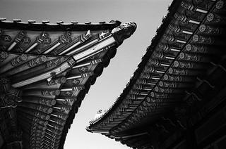 Yin Yang rooftoos