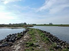 zicht vanaf de Lek op de Goilberdingerwaarden (bcbvisser13) Tags: uiterwaarden landschap perspectief panorama stenen dijk lek rivier goilberdingerwaarden everdingen gemvianen provutrecht culemborg provgelderland nederland eu