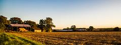 After the harvest (Peter Leigh50) Tags: landscape canon eos 6d farm farmland field sunshine leicestershire uk rural eastmidlandtrains meridian emt
