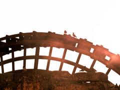 Córdoba - Noria (damargo1983) Tags: córdoba contraluz luz light andalucía silueta silhouette pájaro molino río ríoguadalquivir textura