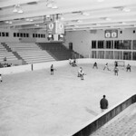 Golden Bears practice, University of Alberta hockey rink thumbnail