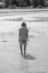 Low Tide Shuffle (umijin) Tags: alupangbeach guahan guam hagatñabay tamuning territoryofguam usa beach material naturalplaces ocean people sand shore sky water weatherelements