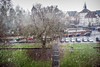 Hail (A. Yousuf Kurniawan) Tags: hail cityscape water ice snow green tree sky rain hardrain weather cameraphone
