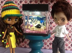 Toy-in-the-Frame Thursday & Blythe-a-Day April#14 Fish: Caribbean Jewel&Eli