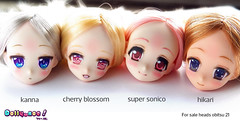 obitsu heads for sale (Dollymoe) Tags: obitsu dolls dolly 16 toy anime handpaint kanna supersonico