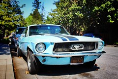 (paleyphotos) Tags: blue old mustang muscle car
