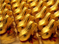 Terrachocolate Army (Bernergieu) Tags: switzerland detail chocolate gold rabbit easter