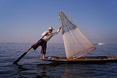 Lac Inle - pêcheur Intha 36 (luco*) Tags: myanmar birmanie burma lac inle lake pêcheur fisherman intha homme man pirogue bateau bota filet nasse flickraward flickraward5 flickrawardgallery