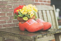Wooden clogs (sonia.sanre) Tags: rojo flores colours flowers red icon tipico europe holanda holland netherlands typical madera zuecos clogs wooden wood
