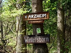 Wegweiser (onnola) Tags: koblenz rheinlandpfalz deutschland rhinelandpalatinate germany schild wegweiser zeichen sign direction arzheim wintersborn