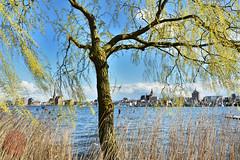 Rostock Stadtmitte (victorlaszlo73) Tags: rostock mecklenburgvorpommern warnow innenstadt frühling sonnig sunny