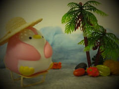 Pudgy Penguin Is On A Tropical Island. (Human-Faced Bun w/ Honey Pudding) Tags: pudgy penguin toy miniature pink tropical island palm tree fruits cute crab star starfruit pitaya dragon dragonfruit mango avocado sea wave summer vacation