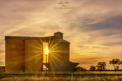 reefton 2 (dundox1) Tags: sunset silo railways