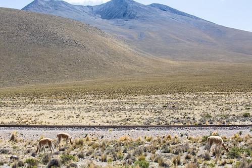 Peru_BasvanOortHR-94