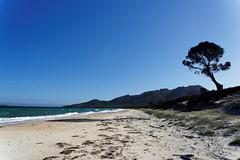 20170414-07-Hazards Beach (Roger T Wong) Tags: 2017 australia freycinet freycinetnationalpark hazardsbeach np nationalpark rogertwong sel2470z sony2470 sonya7ii sonyalpha7ii sonyfe2470mmf4zaosscarlzeissvariotessart sonyilce7m2 tasmania beach bushwalk camp clouds hike ocean outdoors sand sea sky tramp trek walk