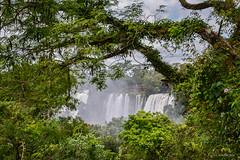 Marco (Angela MGM) Tags: parquenacionaliguazú brasil argentina iguazú naturaleza landscape paisaje agua cascada viaje lugares travel natural