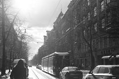 (maiandtheskies) Tags: film nikonfe2 bw snow light winter city bulevardi takatalvi helsinki
