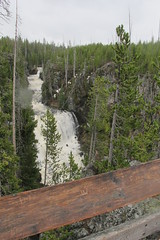 Yellowstone Falls (sprout2008) Tags: yellowstone tetons