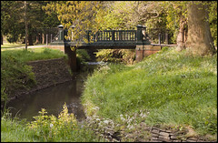 a walk in the park (rich lewis) Tags: park trees plants nature water stream calming tranquility roathpark cardiffparks