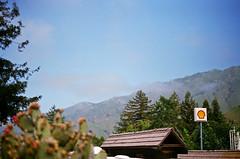 Shell in Big Sur (MacGBeing) Tags: california bigsur juxtaposition canoneos5 pfeifferstatepark filmphotography shellgasstation canon50mmf18ii lomavista shellgassign shellpetrolstation bigsurbakeryandrestaurant bigoilvsnaturallandscape