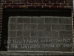 Did you know..... (SCOTTS WORLD) Tags: light shadow brick art digital fun concrete graffiti exploring detroit panasonic adventure april exploration 313 2013 digitalshot russellindustrialartcenter