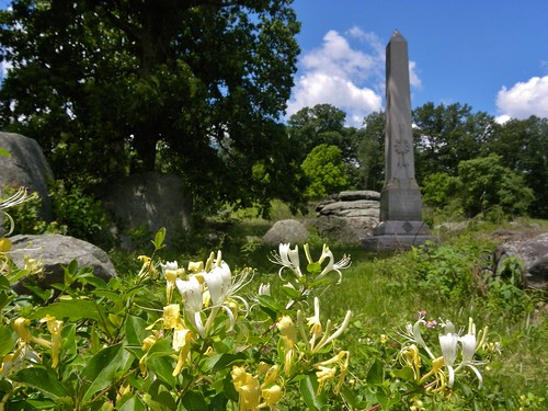 6th NJ Monument and some Honeysuckle