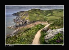 SOAR-MILL-COVE-1000 (jeremy willcocks) Tags: flowers sea beach path cove cliffs panasonic devon foxglove g3 1445 coastpath southhams soarmillcove jeremywillcocks