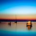 Limeni twilight