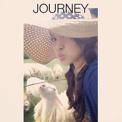 ฝาแฝด แกะขาว กะแกะดำ เป๊ะมั๊ย   555  #ratchaburi #sheep  #swissvalley
