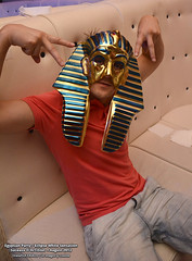 1 August 2013 » Egyptian Party