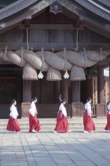 japan-9 (転倒虫) Tags: morning japan worship fresh altar bow 日本 shimane greeting izumo 巫女 朝 出雲大社 島根 出雲 早朝 神職 始業 新卒 神子 izumotaisya 毎朝