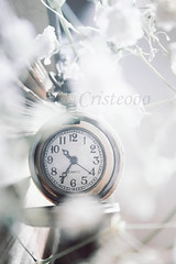 time slows down (Cristeooo) Tags: life old blue red orange brown white black green clock coffee rose yellow by vintage book still purple time bokeh pass objects retro tones