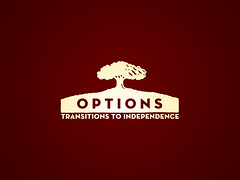 OPTIONS logo when with brehm rgb