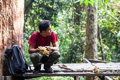 Ranger 4547 (Ursula in Aus) Tags: animal sumatra indonesia unesco bukitlawang gunungleusernationalpark earthasia