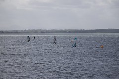 (DavidCorkill) Tags: ireland irish club sailing windsurfing slalom windsurf newtownards