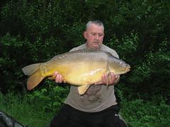 Mirror 1 Sept 2013 Greg Medhurst