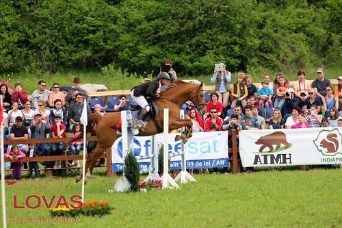 """Transylvania Horse Show 2014 - Díjugratók • <a style=""""font-size:0.8em;"""" href=""""http://www.flickr.com/photos/95148802@N02/13918359740/"""" target=""""_blank"""">View on Flickr</a>"""