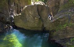 3 Pools (Sazia3) Tags: fish nature river rocks hike trinidad tropical caribbean freshwater greatnature 3pools marianneriver rivermullet