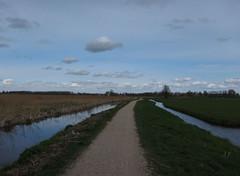Friesland-12