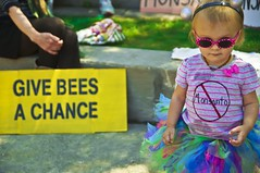 Give Little Bees A Chance (Light Brigading) Tags: sign square bees banner joe bee milwaukee gmo monsanto catalano brusky geneticallymodifiedorganism marchagainstmonsanto