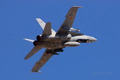 DSC_4728 (COSAS DE VOLAR) Tags: f18 aviación ejercitodelaire ejércitodelaire ala12 baseaéreadetorrejón aviaciónmilitar aviacióndecombate c15721230