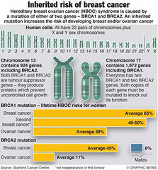 The Inherited Risk of Breast and Ovarian Cancer