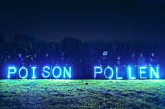 Overpass Light Briigade Cornfield Message to Monsanto: #EndMonsanto (Overpass Light Brigade) Tags: wisconsin square bees joe bee milwaukee pollen poison mam gmo catalano brusky geneticallymodifiedorganism olb occupyriverwest overpasslightbrigade marchagainstmonsanto