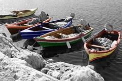 Au port de Carthage (hans pohl) Tags: landscapes cities paysages tunisie villes
