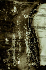 Burn (Microcell) Tags: sign burn burnt vandalized jamesareed