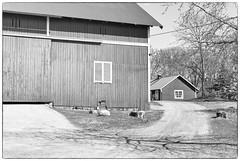 Houses (Xerethra) Tags: blackandwhite bw rural 35mm geotagged spring nikon europa europe sweden skandinavien may sverige scandinavia maj vår järfälla svartvitt 2013 görväln stockholmslän eurpoa nikond80 lantligt