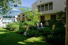 23 Siriraj Hospital and Museums (Goran Bangkok) Tags: museum hospital thailand bangkok herb siriraj