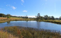 114 Tritton Road, Possum Brush NSW